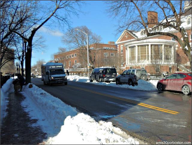 """""""Think Spring"""" en los Autobuses de Harvard después de la Tormenta NIko"""