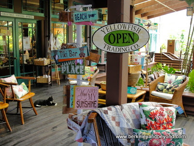 Yellowfish Trading Company shop in Hanalei, Kauai, Hawaii