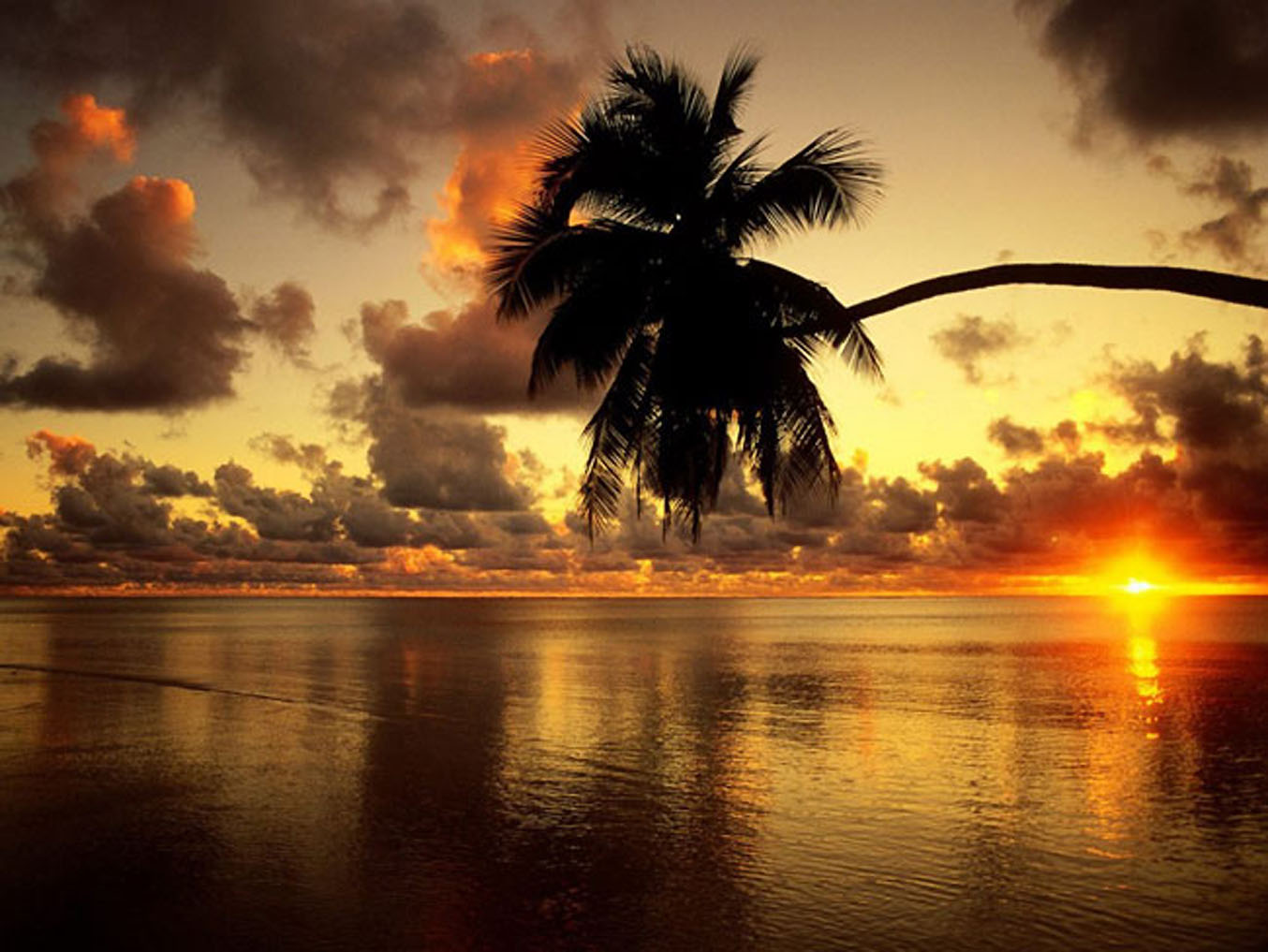 Tropical Island Sunset: Srilankan Natural Sites And Tuorrism