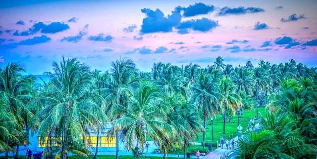 Landscape of palm trees and hotels on south beach Miami fl