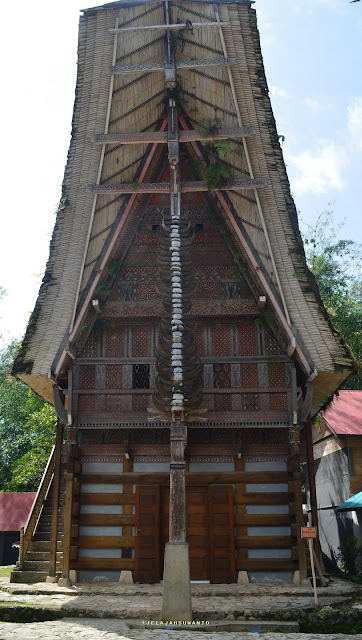Ornamen kepala kerbau dan status sosial Kete Kesu Tana Toraja Sulsel +Fotojelajahsuwanto