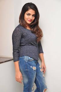 Actress Wamiqa Gabbi Stills in Ripped Jeans at Nannu Vadili Neevu Polevule Movie Release Press Meet  0023