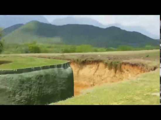 Неуклюжая львица в мексиканском сафари-парке рассмешила туристов