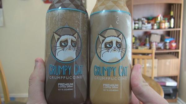 Хозяйка кошки Grumpy Cat Табата Бандесен (Tabatha Bundesen) отсудила 710 тысяч долларов