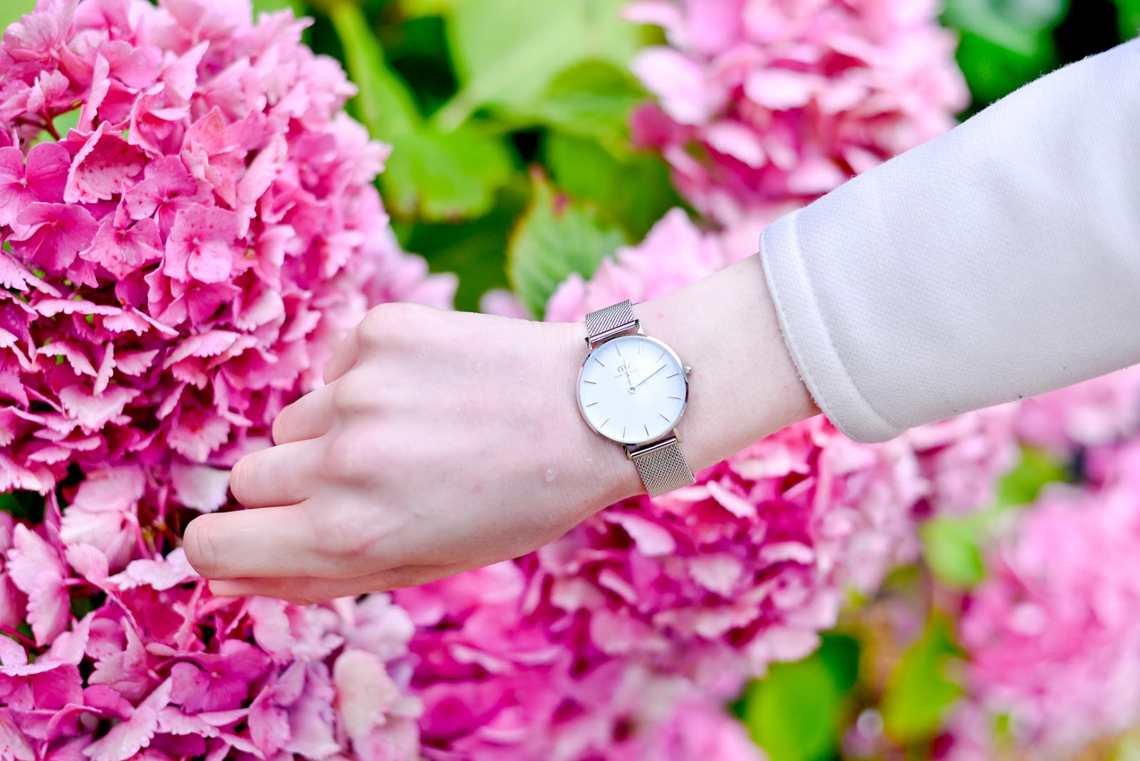 daniel wellington watch, claydon house, national trust properties, daniel wellington discount code