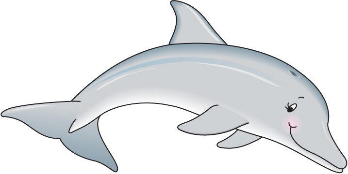 Dibujos Infantiles De Delfines A Color: Delfin Dibujo A Color