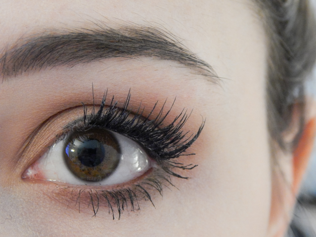 N I C H O L L E S O P H I A Magnetic Eyelash Review