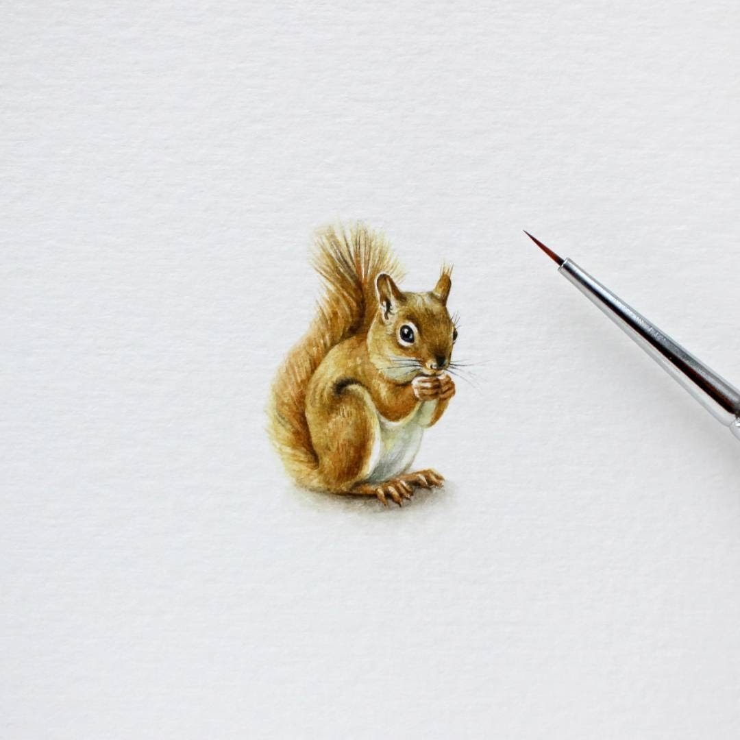 09-Red-Squirrel-Julia-Las-Miniature-3-cm-Paintings-of-Wild-Animals-www-designstack-co