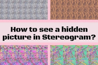 How to see a hidden picture in Stereogram?