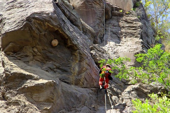 Destinasti Objek Wisata Tur Panjat Tebing Di Kintamani