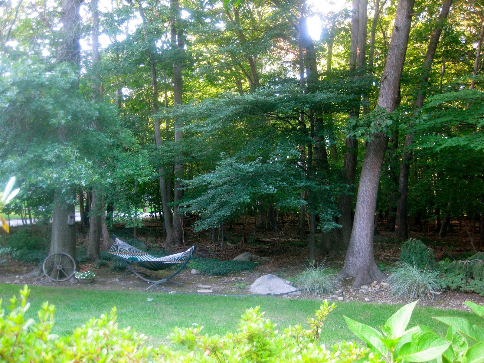 Ms. Toody Goo Shoes: Around My House: Backyard Landscaping on Backyard Landscaping Near Me id=66842