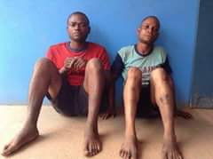 Two suspected homosexuals escape jungle justice in Enugu State