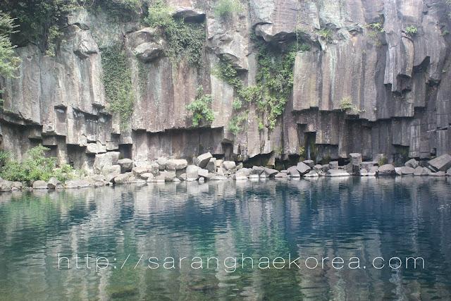 Nature Tripping at Jeju's Cheonjeyeon Falls (천제연 폭포) and Seonimgyo Bridge