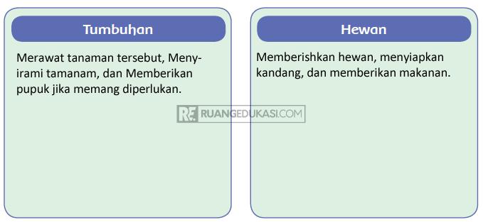 Kunci Jawaban Tema 3 Kelas 4 Halaman 97, 98, 99