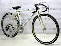 D 27 Inch Gamma Cando 12 Speed Shimano Road Bike