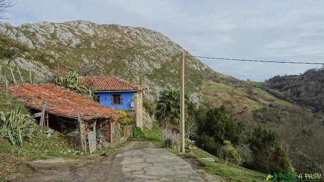 Blenosa, Ribadesella