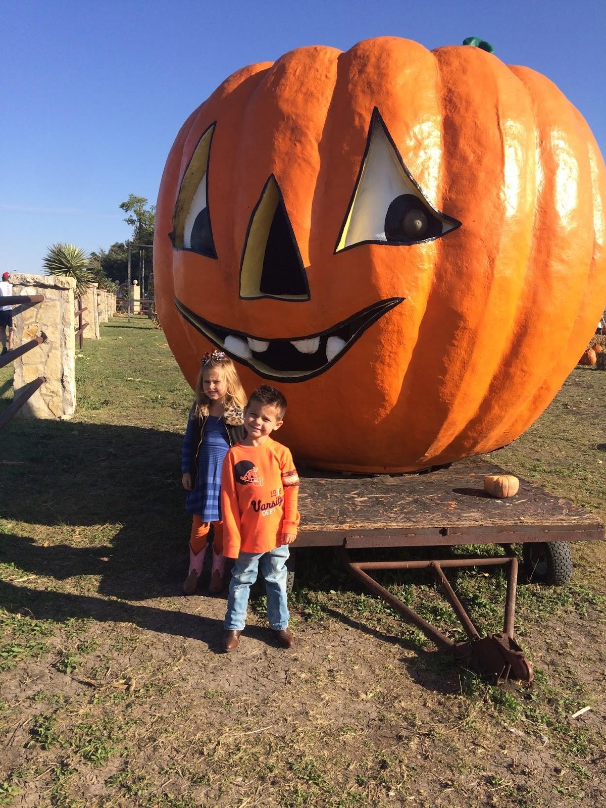 , Pumpkin Patch Day!