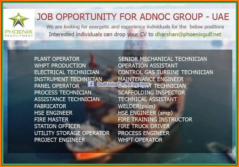 Adnoc teacher salary