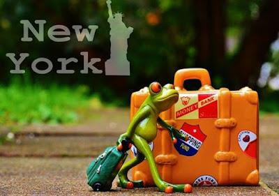 Gambar Katak Lucu Bawa Koper Ke New York Amerika Serikat