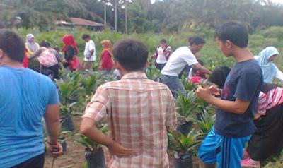 Gambut dan Industri Kelapa Sawit Dalam Perspektif Mahasiswa Pertanian Riau