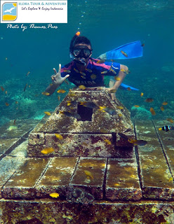 spot snorkeling batu candi pahawang