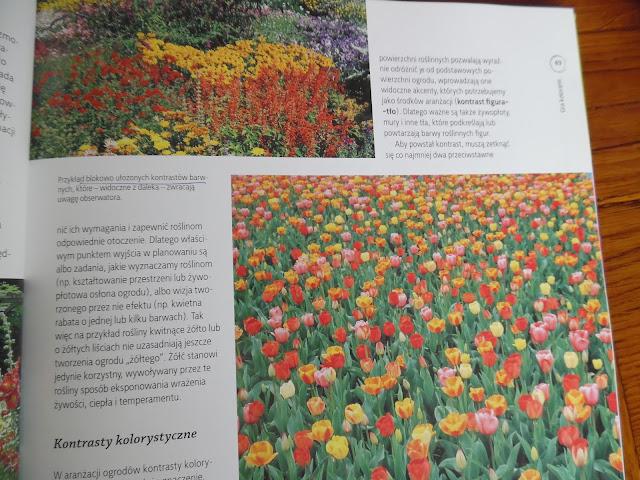 kontrastowe zestawienia kwiatów
