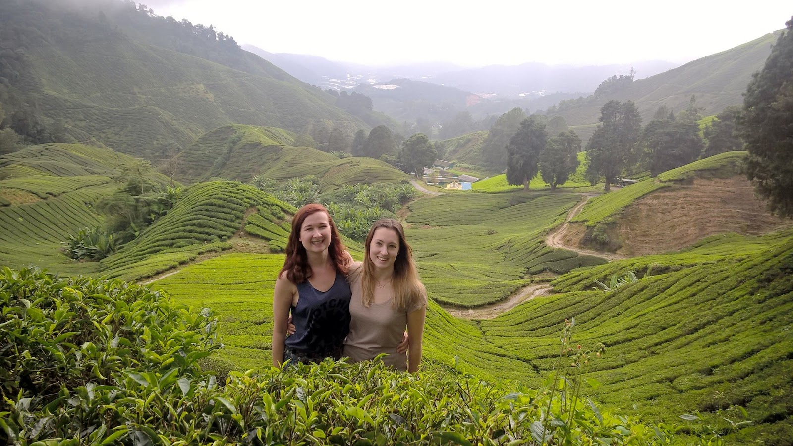Standing with a tea plantation backdrop in the Cameron Highlands