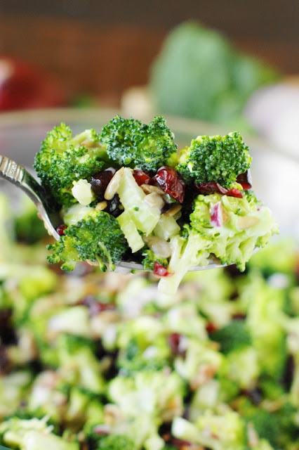 Broccoli Salad with Bacon & Dried Cranberries ~ This version of broccoli salad is packed with great flavor.  Perfect for all those cookouts, church socials, picnics, and potlucks!   www.thekitchenismyplayground.com