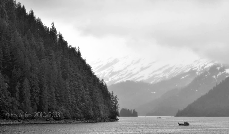 26 Glacier Cruise, Prince William Sound
