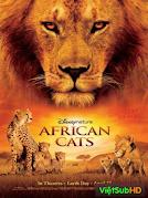 Những Chú Mèo Châu Phi