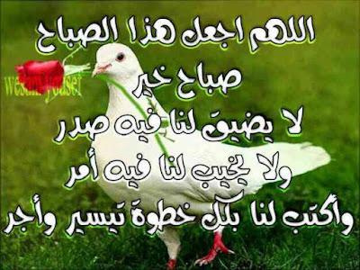 حكمة اليوم صباح الخير