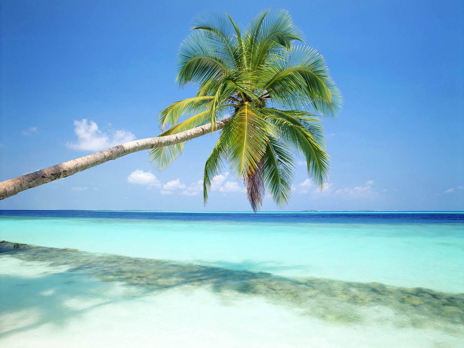 Wallpapers: Beach Desktop Wallpapers