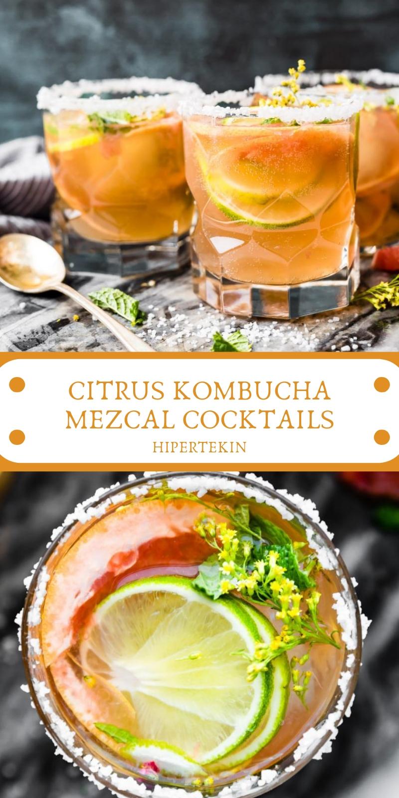 CITRUS KOMBUCHA MEZCAL COCKTAILS