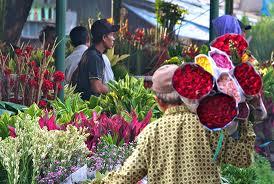 Berlibur Ke Pasar Bungarawabelong