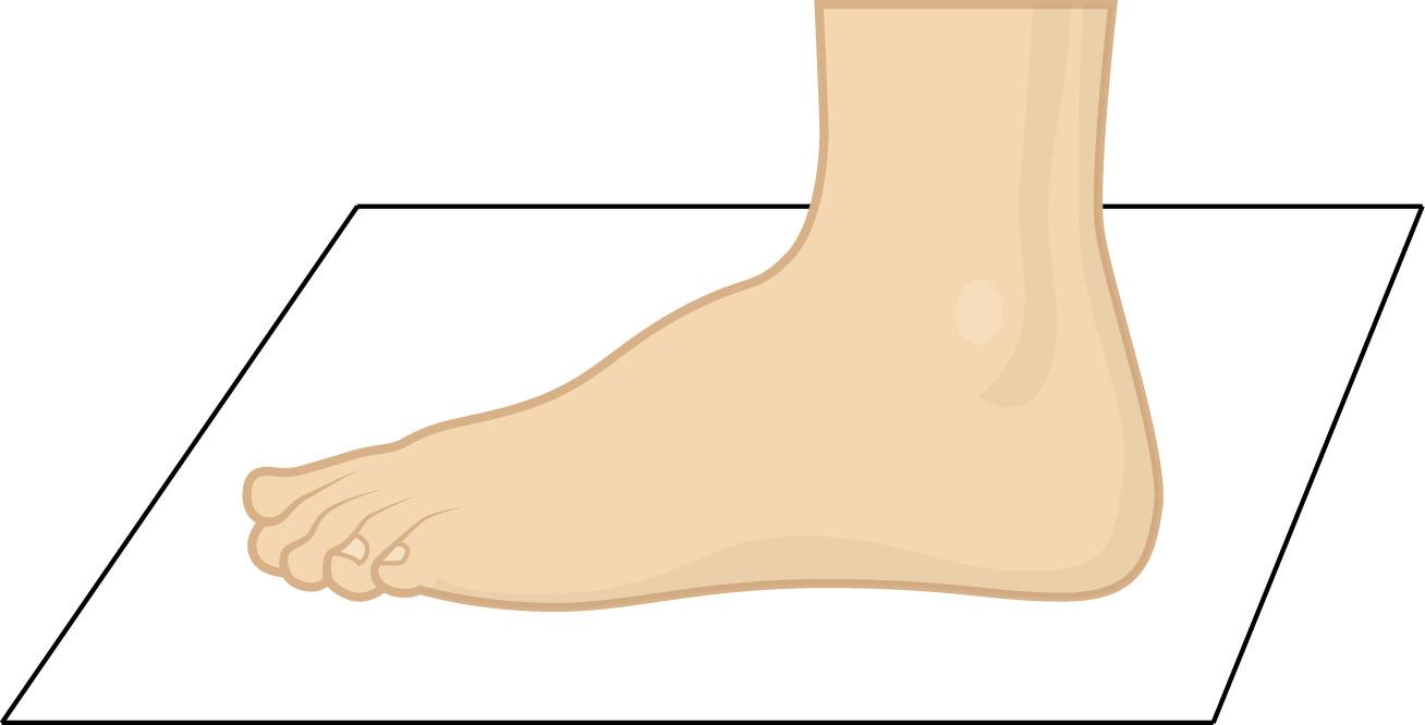 Cara Mengukur Kaki Untuk Ukuran Sepatu - Berbagai Ukuran