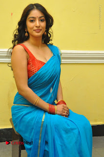 Telugu Actress Vaibhavi Stills in Blue Saree at Www.Meena Bazaar Movie Opening  0072.JPG