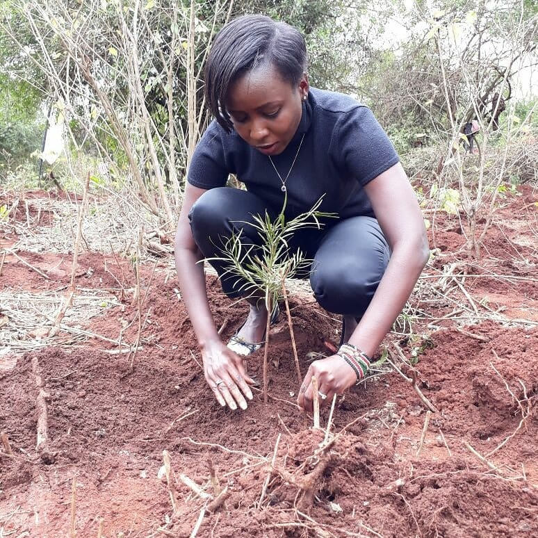 Friends Desert Jacque Maribe In Her Greatest Time Of Need The Circle goes on holiday together and members support each other to climb the career ladder. It is comprised of Jacque Maribe, Kirigo Ngarua, Terryanne Chebet, Shiks Kapyenga, Monica Kiragu, among others.