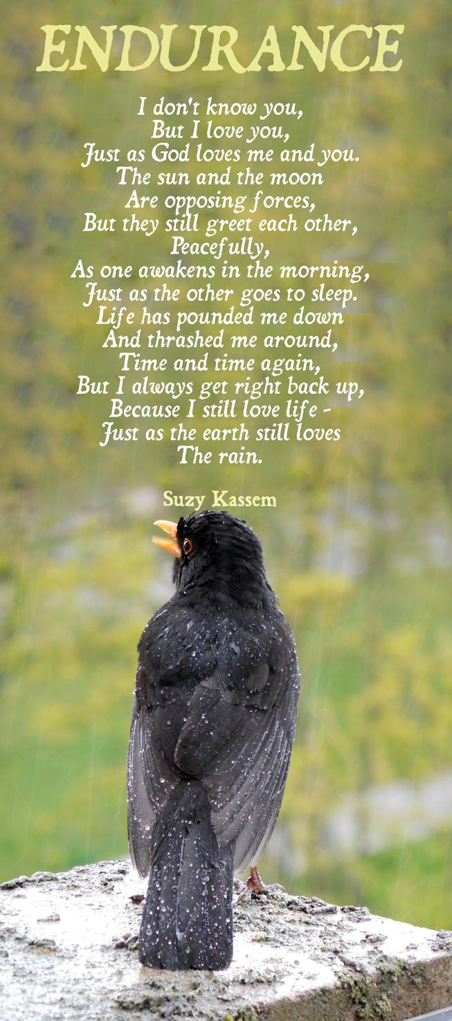 Endurance Poem