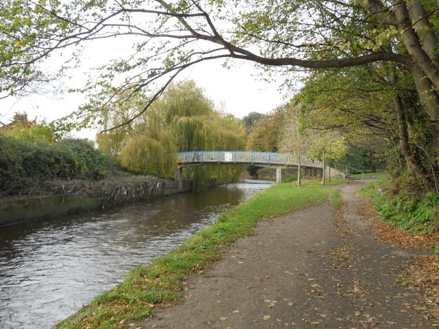 Walk the River Dodder in Dublin - path and bridge