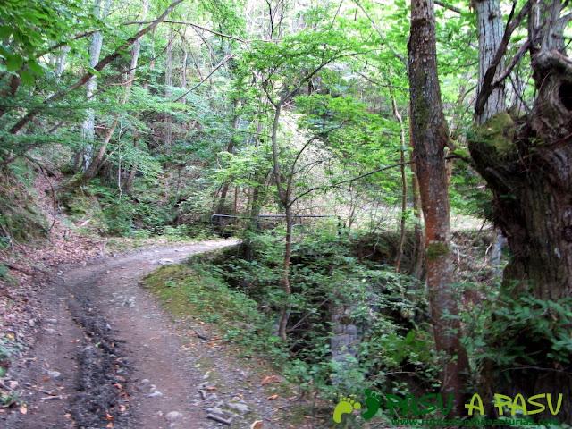 Puente subiendo al Alto de Piedrafita desde Llananzanes