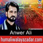https://www.humaliwalyazadar.com/2018/09/anwer-ali-nohay-2019.html