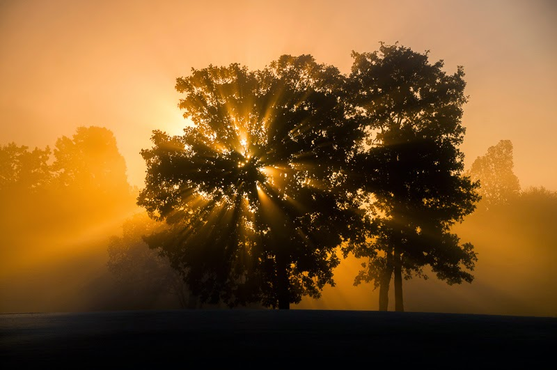 Morning at Lost Woods Golf Course in Theodosia, Missouri