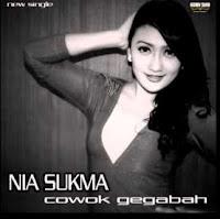 Lirik Lagu Nia Sukma Cowok Gegabah