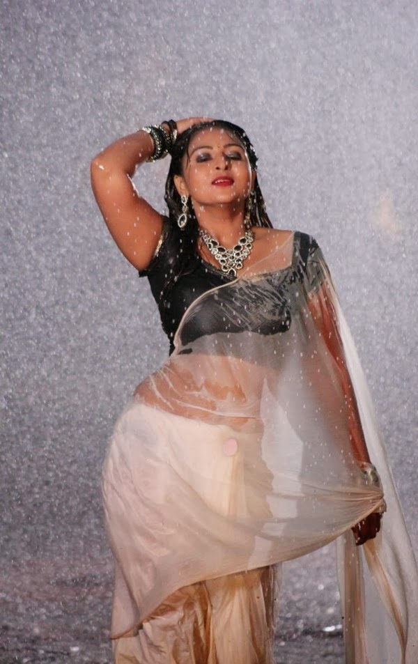 Hot South Indian Aunty in Transparent Wet Saree