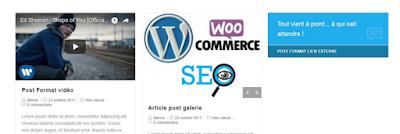 Article WordPress: دليل المستخدم الكامل