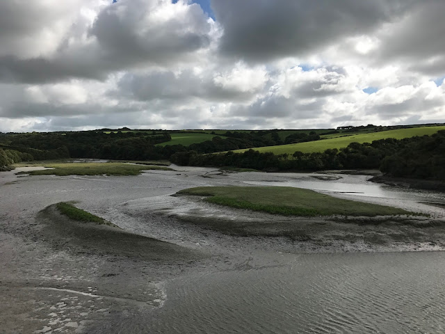 Little Petherick Creek from the Camel Trail, Padstow, Cornwall