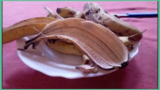 كيفية عمل سماد طبيعي للنباتات المنزليه من قشور الموز بخمسة طرق