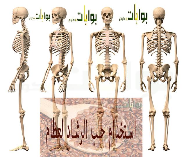 طريقة استخدام حب الرشاد للعظام وصفة مجربة