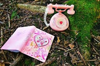 Puisi Cinta Diary Hati Karya Afidatul Putri Aisyiyah