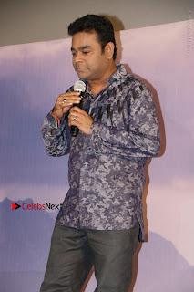KaatruVeliyidai Movie Audio Launch  0053.jpg